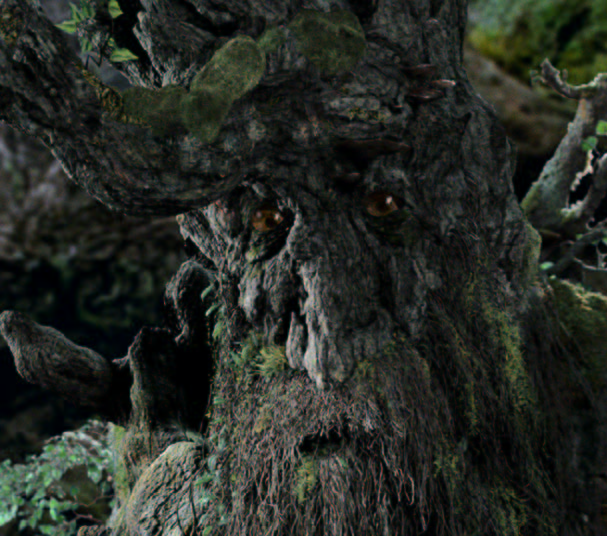 Paris Climate Deal Must Be Reached or the Ents Will March